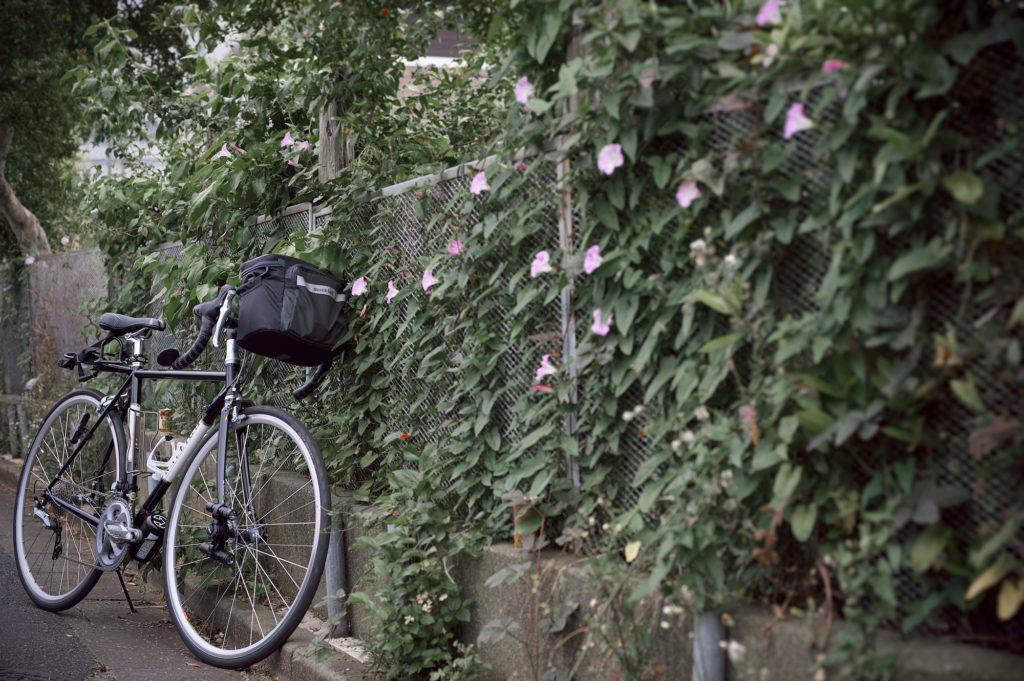 小道に迷い込んだロードバイク・ラレーCRF